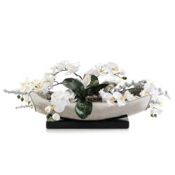 John Richard Frost Orchids