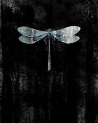 Art Classics Blue Wings Dragon Fly