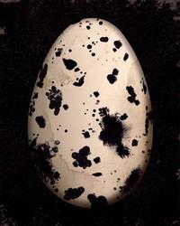 Art Classics Cream Speckled Egg