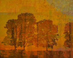 Art Classics Shadow of Trees Two