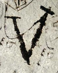 Art Classics Letter V