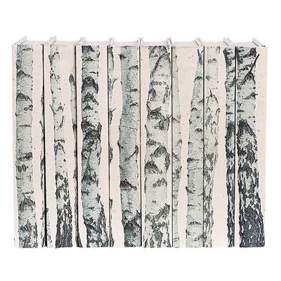 E Lawrence Birch Tree Trunks