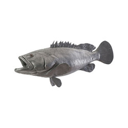 Phillips Collection Estuary Cod Fish, Polished Aluminum