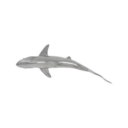 Phillips Collection Whaler Shark, Polished Aluminum