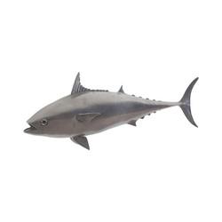 Phillips Collection Mackerel Fish, Polished Aluminum