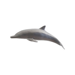 Phillips Collection Dolphin, Polished Aluminum