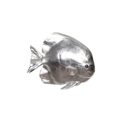 Phillips Collection Australian Batfish, Silver Leaf