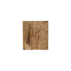 Phillips Collection Cast Petrified Wood Wall Tile, Resin, Square