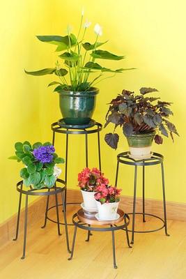 Argyle Plant Stand I