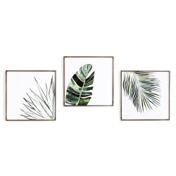 Four Hands Botanicals By Jess Engle - Set Of 3