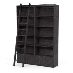 Four Hands Bane Bookshelf - Double Bookshelf W/ Ladder - Dark Charcoal