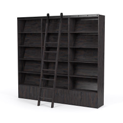Four Hands Bane Bookshelf - Triple Bookshelf W/ Ladder - Dark Charcoal
