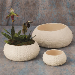Ceramic Urchin Bowl - Matte White - Med