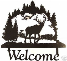 Elk Bull in Wilderness Welcome Sign