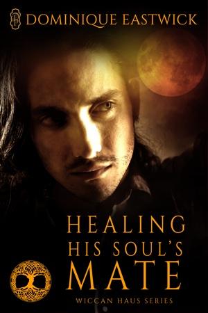 healing-his-soul-s-mate.jpg