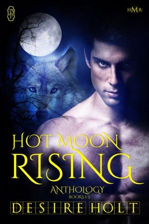 hot-moon-rising-anthology.jpg