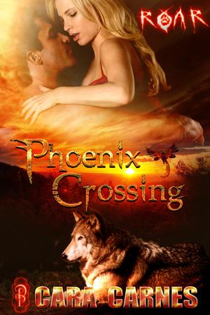 phoenix-crossing.jpg