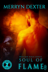 Soul of Flame (Wiccan Haus #15) by Merryn Dexter