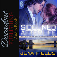 Sidelined Afterlife Audiobook