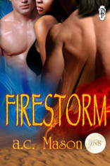 Firestorm (1Night Stand)