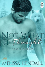 Not What He Thought (1Night Stand)