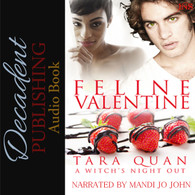 Feline Valentine Audio Book