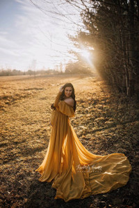 Anastasia Full Circle Chiffon with Off Shoulder Ruffles, Gold
