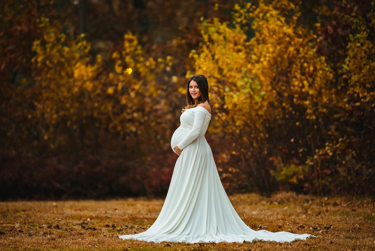 c8d75fb111820 Darah Maternity Dress - Silk Fairies