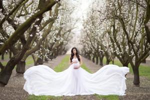 Liana Gown