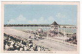Charlottetown, Prince Edward Island, Canada Postcard:  Harness Racing