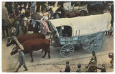 Kansas City, Missouri Postcard:  Ezra Meeker's Ox Team Heading Industrial Parade, October 5, 1910