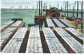 Provincetown, Cape Cod, Massachusetts Postcard:  Drying Cod Fish