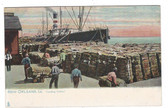 New Orleans, Louisiana Postcard:  Loading Cotton