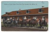 Des Moines, Iowa Postcard:  Farm Teams Exhibit, Iowa State Fair Grounds