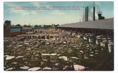 Waco, Texas Vintage Postcard:  Cotton Compress