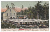 Rangeley Lakes, Maine Postcard:  U. S. Salmon and Trout Hatchery