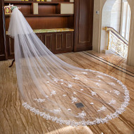 cathedral veil with long train