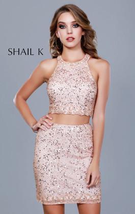 Shail K. 12171