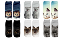 3D Cat Trainer Socks