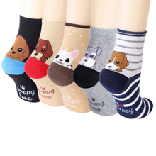 5 pairs Dog's Face on Socks - Back Face