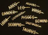 Zodiac Hairpins