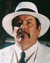 This is an image of 239808 Peter Ustinov Photograph & Poster