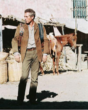 This is an image of 240556 Paul Newman Photograph & Poster