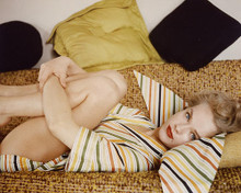 This is an image of 253026 Anne Francis Photograph & Poster