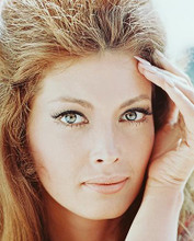 This is an image of 247324 Samantha Eggar Photograph & Poster