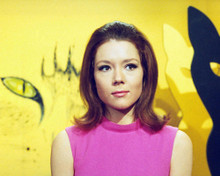 This is an image of 268037 Diana Rigg Photograph & Poster