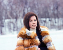 This is an image of 277007 Mary Tyler Moore Photograph & Poster