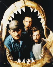 This is an image of 212095 Jaws Photograph & Poster