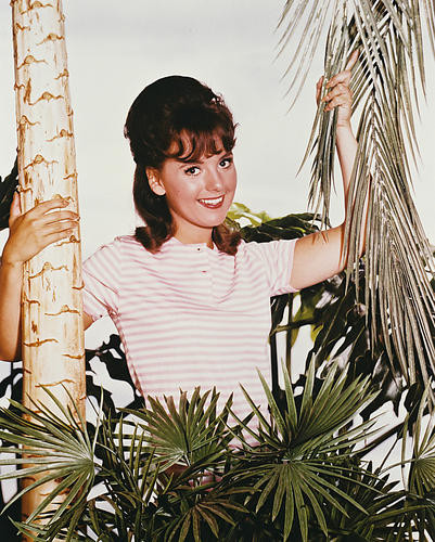 This is an image of 212750 Gilligan's Island Photograph & Poster