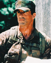 This is an image of 213404 Sylvester Stallone Photograph & Poster